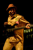 living colour-0310